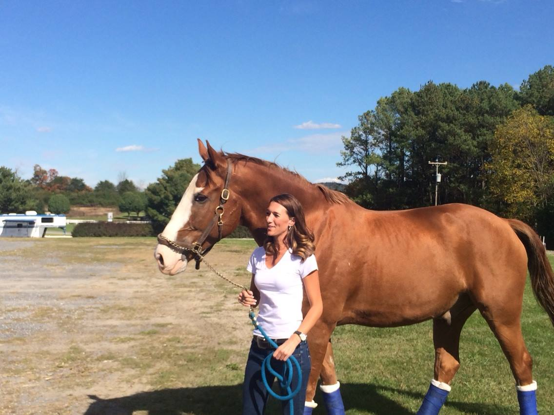 Sold by Impulsion Unlimited - Prince with new owner Mandy